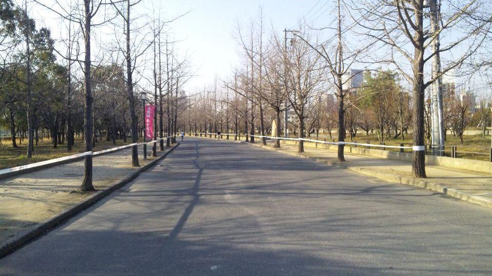 01-31-2010DVC00016.jpg