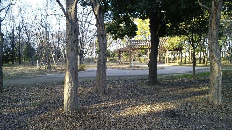 01-31-2010DVC00052.jpg