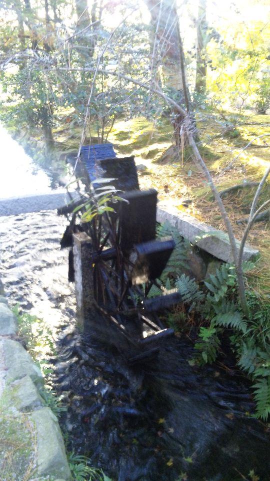 Nov-16-2009-image20091022.jpg