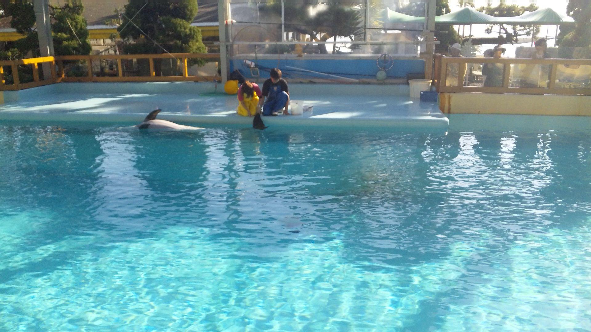 Nov-24-2009-image20090966.jpg